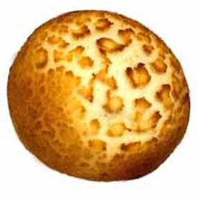 ■季節のパン■5種チーズのダッチロール145円